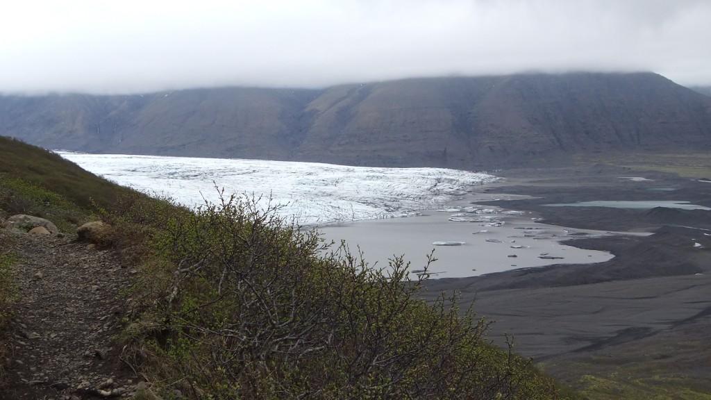 langue glacière6